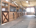 barn aisle with stalls